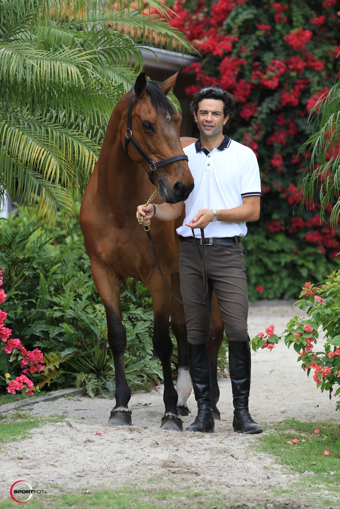 About Paillot Equestrian