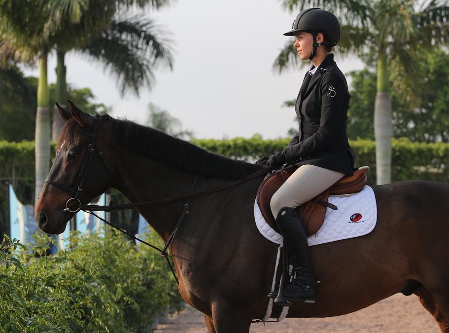 Butet- Official Supplier of Paillot Equestrian | Paillot