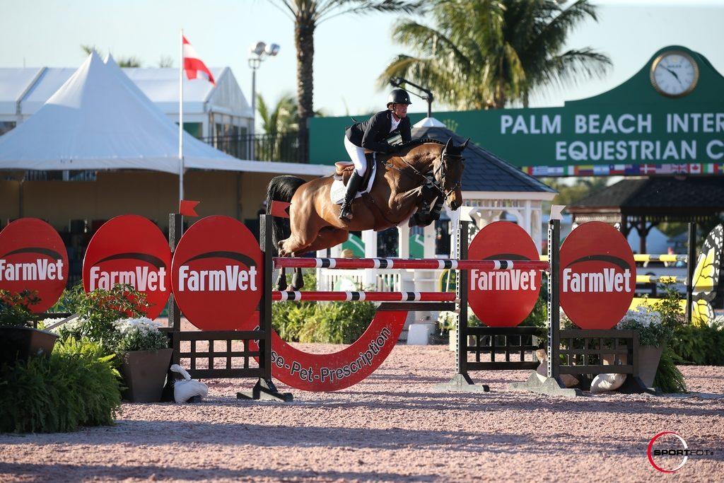 25/01/2017 ; Wellington FL ; Winter Equestrian Festival - Week 3 ; 4694, VALENTINO D'ELTE, DARRAGH KENNY ; 1m40 ; Sportfot