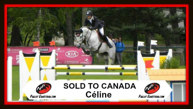 SOLD: Celine