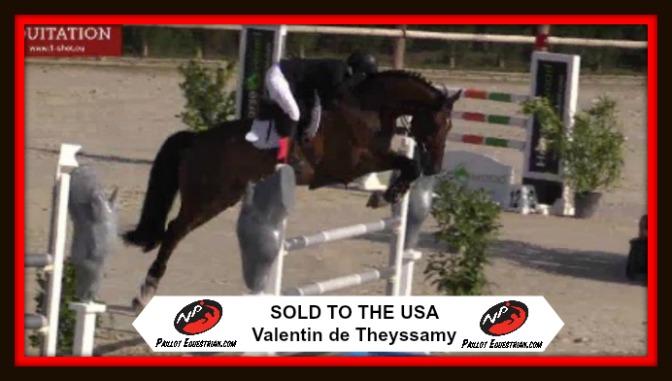 SOLD: Valentin de Theyssamy